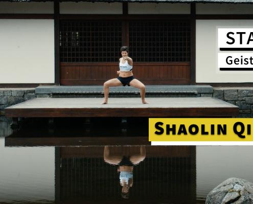 Videokurs Shaolin Qi Gong - Titelbild